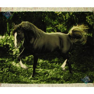 تابلو فرش دستباف تبریز طرح اسب مشکی چله و گل ابریشم